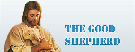jesus is our good shepherd,the good shepherd is the one who gives life for the sheep and always protects them